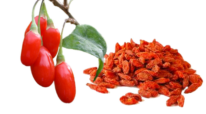 Goji Berry Juice Improves Blood Functioning
