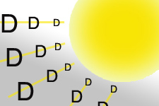 The Essential Vitamin D